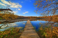 Fall on Lone Lake (Mercenaryhawk) Tags: lone lake minnetonka minnesota fall leaves color brown water clear reflection clouds sky blue autumn seasons dock nature landscape hdr canon eos 5d mark iii 3 wood woods forest vanishing point beautiful breathtaking pretty