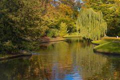Frederiksberg Gardens (Fraila) Tags: frederiksberghave garden park nikond600 nikkor50mm18f colours autumn fall leaf trees lake water autumnleaves flickrfriday