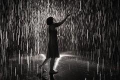 A Walk in the Rain (Trent's Pics) Tags: awalkintherain exhibit california losangeles rainroom rain museumofart art county lacma