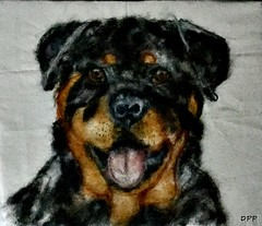 Rottweiler woolpainting (Needle Feltings by - Dexihexi Pouch Puppies) Tags: woolpainting petportrait rottweiler felting wool needlefelted doglover dogs dexihexipouchpuppies