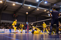 _IGP9639 (Pierre-Emmanuel Jolivot) Tags: nantes vbn pej volley mulhouse