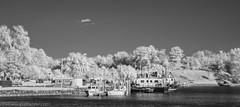 PA230046-Edit (Bob Gilley) Tags: infrared chesapeakecity olympus em5