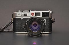 Leica M6 TTL with Carl Zeiss 50mm f/2 Planar T* ZM (trphotoguy) Tags: leicam6ttl leicam6 rangefindercamera leica carlzeiss50mmf2planartzm carlzeiss50mmf2 carlzeiss50mmf2planar