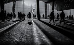 view (dieterein@ymail.com) Tags: monochrome schwarzweis blackandwhite