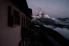Zermatt 8 (jfobranco) Tags: switzerland suisse valais wallis alps zermatt gornergrat cervin matterhorn