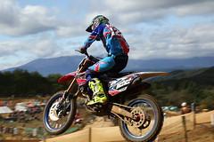#122 KOGA TAIKI (go_Matin) Tags: motocross mx racing japan honda crf250 alpinestars
