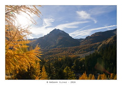 20161028_Derborence-Godey-158 (Grgory Clivaz Photographie) Tags: derborence valais grgory clivaz