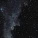 The Witch Head Nebula (IC 2118)