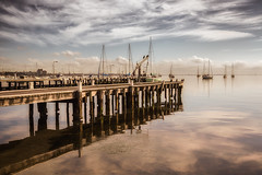 The boat yard (Chas56) Tags: geelong canon canon5dmkiii coriobay jetty pier yachts boats water waterfront beach sea seaside reflection clouds pylons rustic light diffusedlight bay ngc