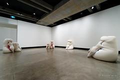 20161112-36-Humanoids by Ernesto Eto (Roger T Wong) Tags: 2016 australia hobart mona museumofoldandnewart ontheoriginofart rogertwong sel1635z sony1635 sonya7ii sonyalpha7ii sonyfe1635mmf4zaosscarlzeissvariotessart sonyilce7m2 tasmania art exhibition