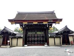 Kyoto Gosho (ComiendoXelmundo) Tags: kyoto kioto japan japon japn viajeenpareja viajes visitjapan viaje wouldyoutravel world rtw huawei huaweiathul06 huaweishotx huaweihonor7i roundtheworld descubriendoelmundo recorriendo travel travelblogger trip turismo style lifestyle smartphonephotography streetphotography turistas sueos cities visit ciudadesdelmundo life comiendoxelmundo conociendoelmundo palacioimperial palacio estilodevida imperial
