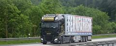 D - Philip Reich >Fernfahrer< DAF XF 106.460 SSC (BonsaiTruck) Tags: airbrush philip reich fernfahrer daf xf 106 ssc lkw lastwagen lasdtzug truck trucks lorry lorries camion
