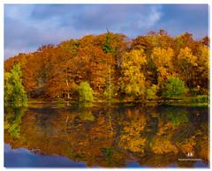 OCTOBER 2016  NM1_1232_015636-222 (Nick and Karen Munroe) Tags: nikon1424f28 nickmunroe nikon nickandkarenmunroe nickandkaren nikond750 karenick23 karenandnickmunroe karenick karenmunroe karenandnick munroedesignsphotography munroedesigns munroephotography munroe beauty brampton ontario canada clouds colour colors fall fallcolors fallsplendor foliage trees tree lake landscape