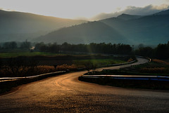 Dusk on my way (jimiliop) Tags: dusk morning road sun roadtrip shine rays sunrays nature trees fields stymfalia greece mountains clouds curves countryside landscape perspective land