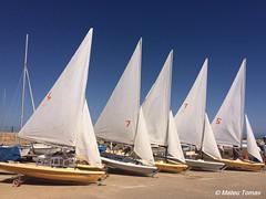 Veles (Mateu Tomas) Tags: illesbalears sail vela white blue