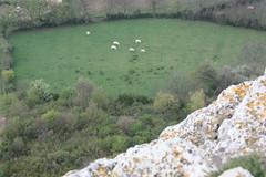 Prairie vue du sommet de la roche de Solutré (Christophe Ramonet) Tags: solutre solutrepouilly