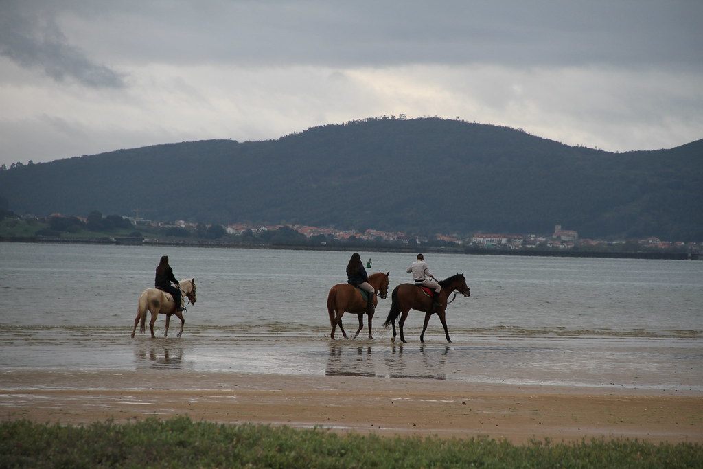 Playa del Regaton Horseriders