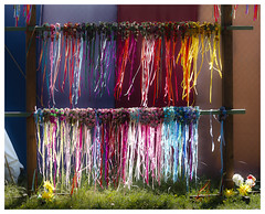 don't you just love color? (John Truong Pictures) Tags: southern faire renaissance pleasure 2012 johntruong johntruongpictures johntruongphotography