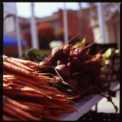 Carrots and beets (mimiredo) Tags: hasselblad velvia 100 fujichrome fullerton 501c