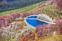 small reservoir in mountain (Mikel Martnez de Osaba) Tags: blue autumn mountain tree green nature water grass forest landscape pond outdoor dam small reservoir
