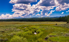 A Scene at Kyburz Flat (buffdawgus) Tags: california northerncalifornia landscape spring springtime mountainmeadow highway89 sierranevadarange sierracounty canon7d kyburzflat canon1585mmusmis lightroom4 topazsw dailyrayofhope2013