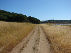 Trail and Grasslands Rush Creek Open Space Preserve (Dunby PICS) Tags: pictures california road trees sky mountains creek outdoors fire san open pics blu space wildlife marin picture pic clear trail rush bahia wetlands novato exit avenue preserve grasslands atherton levee pinheiro binford 2013 bugela wdunby marincountyorg marincountyparksorg