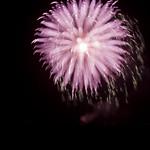 Flor de pólvora thumbnail
