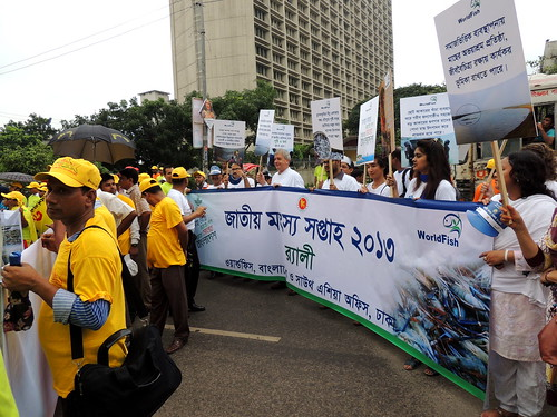 Glimpse from National Fish Week in Dhaka, Bangladesh. Photo by Khandker Hasib Mahnub, 2013.