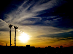 Never End (TheJudge310) Tags: california sunset sky usa tree palm barstow