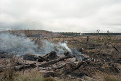 **-- (jamiehladky) Tags: film 35mm canon landscape fire kodak smoke australia burn ashes nsw newsouthwales ash portra eos3 controlled smoulder 160 portra160 1635mmf28lii jamiehladky hladky