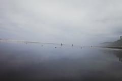 bartnelena-675 (rhys logan) Tags: ocean camping slash sunset sun beach coast washington sand surf waves pacific rip surfing shaka rollers peninsula sets ripcurl lapush shred libtech hangtime airs airout waterboard surfphotography northwestsurf rhyslogan surfwashington surfwa