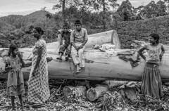 Woodcutter family, Ella_Sri Lanka (Dan Bernard 131 Design) Tags: people photography hampshire srilanka travelphotography srilankans imagesofsrilanka danbernard 131design tricornbooks