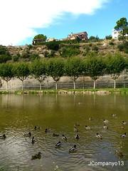 Llac de Navarcles (Pep Companyo - Barral) Tags: barcelona del de catalunya anas aigua conca llac riu bages llobregat josep calders collverd navarcles anecs companyo platirinchos barralo