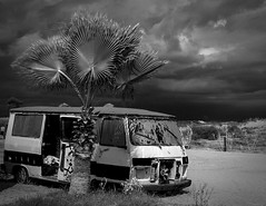 Old car & a palmtree (OleBruunPhotography) Tags: light sky tree beach monochrome car turkey blackwhite side palm van