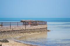 DSC_0009.jpg (wmcwick) Tags: sea qatar traval alkhor