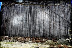 Dead End (Groovyal) Tags: art wall forest dead photography image historic stop end pinelands wharton deadend batsto groovyal