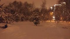парк Воронцова (garchu_a) Tags: night ночь москва парк