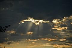 Abendlicht - Evening light (SoniaShari) Tags: light sunset sun clouds evening abend licht soleil nikon sonnenuntergang wolken rays soir sonne sonnenstrahlen stimmung d3200