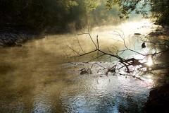 Morning Mist (keikoellis) Tags: trip autumn mist australia victoria bogong borderfx