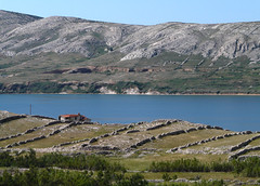 Croatia, Pag (duqueıros) Tags: kroatien croatia adria norddalmatien pag insel isle isleofpag hrvatska sea meer natur berg mountain nature duqueiros