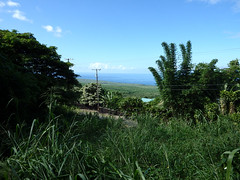 Upper View (hcwolford) Tags: hawaii property land oceanview