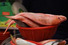 Tekka Market, Singapore (olyaterekhova) Tags: singapore little india market street life fish colors red food