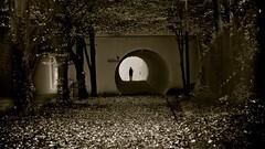 Afterlife (Marie.L.Manzor) Tags: bw sepia monchrome silhouette fall mood nikon nikon610 marielmanzor nikkor mystery pov frame 2016 backlight light tunnel atmospheric bright night street poeople shadow moody spooky atmosphere 1000favs 1000favorites
