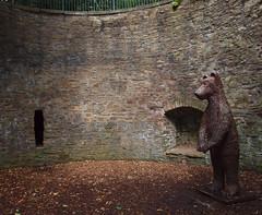2016_08_1690 (petermit2) Tags: bearpit bear botanicalgardens botanical gardens sheffield southyorkshire yorkshire