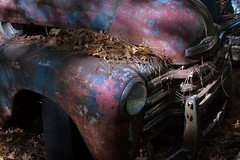 (surgeon24hrs) Tags: canon canon7d digital dslr tamron zoom color car classiccar ruin rust oldcarcityusa