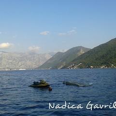 Boka Kotorska (Nadica Gavrilovic) Tags: montenegro crnagora more evropa