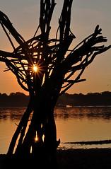 DrowningRefugee03 (PuraVida Photo) Tags: washingtondc alexandria art dawn driftwood sunrise installationsculpture refugee foundart