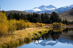 Dynamo Pond, a Little Known Piece of American History (blmcalifornia) Tags: history yourpubliclands yourlands mining california hydroelectric power historic easternsierra ghosttown