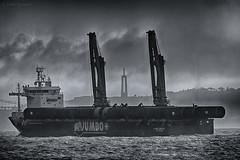Jumbo (Luis-Gaspar) Tags: barco boat vessel heavyliftvessel navio naviocargueiro naviodecarga naviodecargapesada jumbo jumbojubilee portugal oeiras pacodearcos tejo riotejo tagus tagusriver mono monocromatico monochrome pb bw nikon d60 55300 f56 14000 iso400