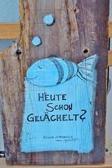 """""""Heute schon gelchelt?""""     -      """"Smiled today?"""" (chrissie.007) Tags: heuteschongelchelt smiledtoday fisch zebrafisch lbeck karintauer atelier"""
